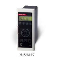 GIPAM 10